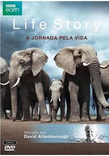 BBC - LIFE STORY: JORNADA PELA VIDA (QTD: 3)