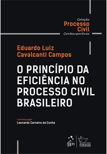O PRINCIPIO DA EFICIENCIA NO PROCESSO CIVIL BRASILEIRO