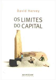 OS LIMITES DO CAPITAL - 1ªED.(2013)