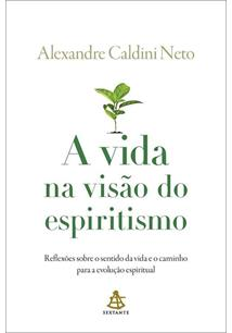 A VIDA NA VISAO DO ESPIRITISMO: REFLEXOES SOBRE O SENTIDO DA VIDA E O CAMINHO P...
